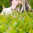 Stock Photo: Young couple kissing in green bushes