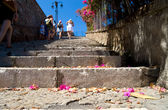 Stairs with flower petals — Stock Photo