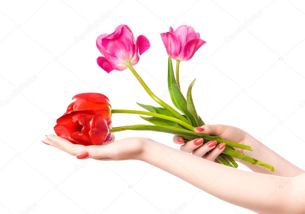 Woman hands with flowers. Isolated on white. — Stok fotoğraf #1752084