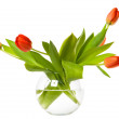 Flowers in glass bowl — Stock Photo
