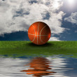 Basket ball on the green grass with sky — Stock Photo #1146030