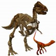 Royalty-Free Stock Photo: Trex skeleton