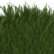 Royalty-Free Stock Photo: Cool 3D grass