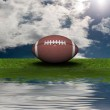 Football on the green grass with sky bac — Stock Photo #1146590