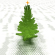 Christmas tree ready to decorate - Stock Photo