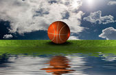 Basket ball on the green grass with sky — Stock Photo