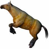 3D beautiful horse — Stock Photo