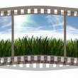 Film with 3 images of green grass — Stock Photo