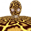 Leopard textured skull - Stock Photo