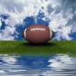 Football on the green grass — Stock Photo