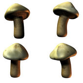 Mushrooms in 3D — Stock Photo