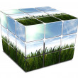 3D cube with green grass and blue sky on white — Photo