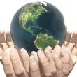 Earth in hands isolated on white — Stock Photo