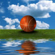 Basket ball on the green grass with sky background — Stock Photo