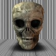 3d big realistic skull — Stock Photo