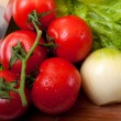 Stock Photo: Tomato, salad and onion