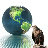 3D globe with eagle — Stock Photo