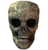 3D skull — Stock Photo