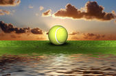 Tennis ball on the green grass — Stock Photo
