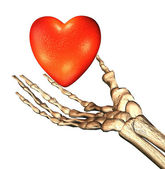 Red 3D heart in bones hand — Stock Photo
