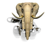 Elephant on the hand — Stock Photo