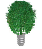 Green ecological tree — Stock Photo