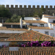 Stock Photo: Obidos Fortress