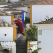 View of Obidos - Stock Photo