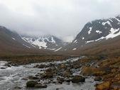 Creek in Newfoundland — Stock Photo