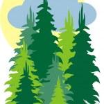 Fir forest — Stock Vector