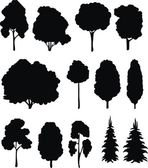 Träd. vektor set. — Stockvektor