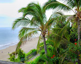 View on a beach and a courtyard — Foto Stock