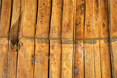 Bambu — Stockfoto