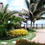 Tropical Garden In The Beach — Stock Photo