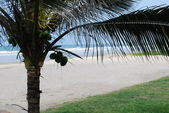 太平洋海岸 — 图库照片
