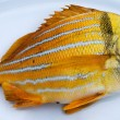 Stock Photo: Gold fresh fish