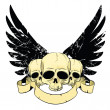 Skulls with wings — Stock Vector