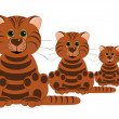 Three tigers — Stock Photo