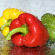 Freshness paprika over white - Stock Photo