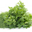 Dill and celery over white - Stock Photo