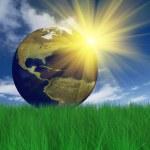 Globe on grass — Stock Photo