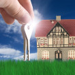 Nice house on grass — Stock Photo