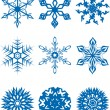Collection of snowflakes — Stok Vektör