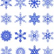 Collection of snowflakes3 — Stockvektor