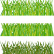 Set of grass. Vector illustration — Stock Vector