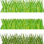 Set of grass. Vector illustration — Stock Vector