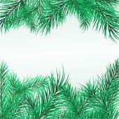 Quadro de ramos de pinheiro — Vetorial Stock