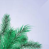 Marco de ramas de pino verde — Vector de stock