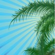 Summer background with palm — Imagen vectorial