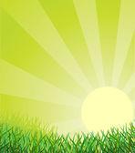 Contexte écologique — Vecteur